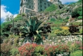 St Michaels Mount Garden