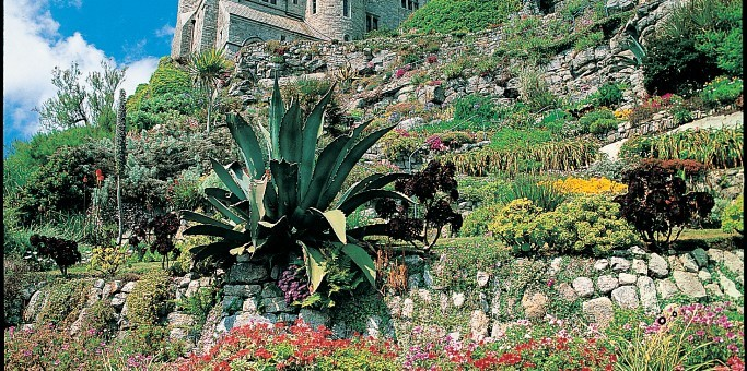 Close up shot of the gardens of St Michaels Mount towards the castle